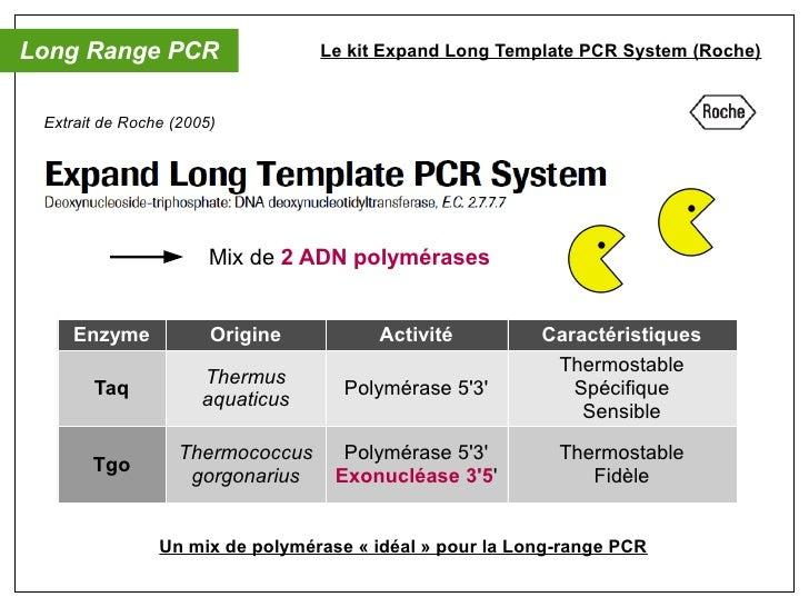 oral diagnostic mol culaire pcr multiplex s rotypage. Black Bedroom Furniture Sets. Home Design Ideas