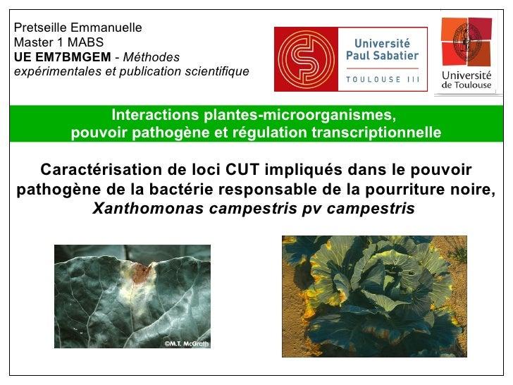 Pretseille EmmanuelleMaster 1 MABSUE EM7BMGEM - Méthodesexpérimentales et publication scientifique              Interactio...