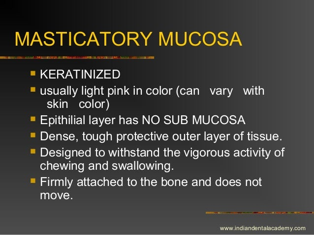 MASTICATORY MUCOSA  KERATINIZED  usually light pink in color (can vary with skin color)  Epithilial layer has NO SUB MU...