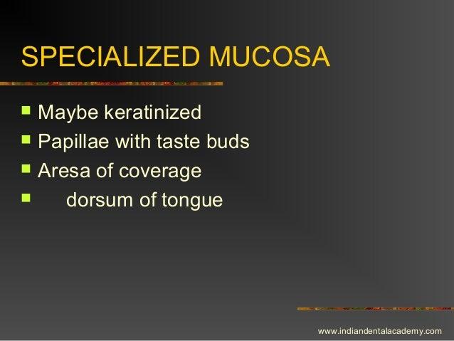SPECIALIZED MUCOSA  Maybe keratinized  Papillae with taste buds  Aresa of coverage  dorsum of tongue www.indiandentala...