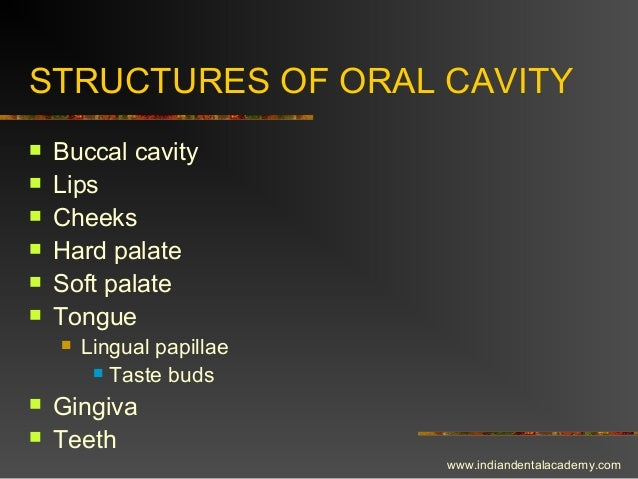 STRUCTURES OF ORAL CAVITY  Buccal cavity  Lips  Cheeks  Hard palate  Soft palate  Tongue  Lingual papillae  Taste ...