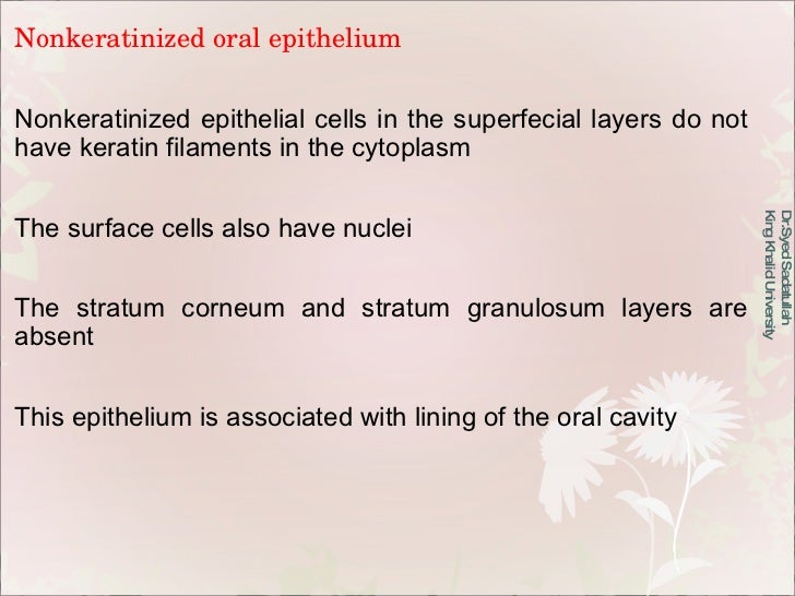 Nonkeratinized oral epithelium Nonkeratinized epithelial cells in the superfecial layers do not have keratin filaments in ...
