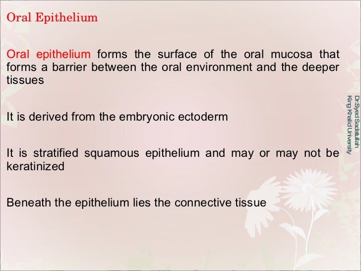 Oral Epithelium Oral epithelium  forms the surface of the oral mucosa that forms a barrier between the oral environment an...
