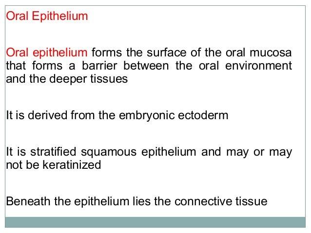 Oral Epithelium -Keratinized