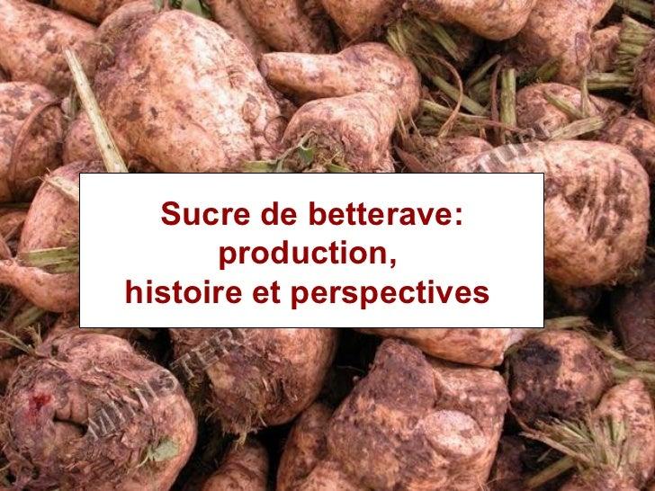 Sucre de betterave: histoire,    Sucre de betterave:production et perspectives.       production,  histoireLe bioéthanol  ...