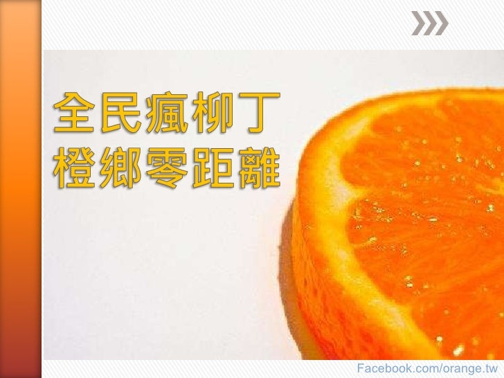 全民瘋柳丁 橙鄉零距離