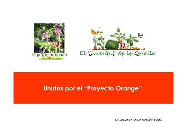 """El Liceo de La Corolla curso 2014-2015 El """"huertín"""" de la Corolla Unidos por el """"Proyecto Orange""""."""