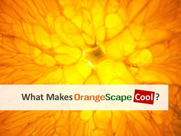 What Makes  OrangeScape   Cool  ? By sgwizdak