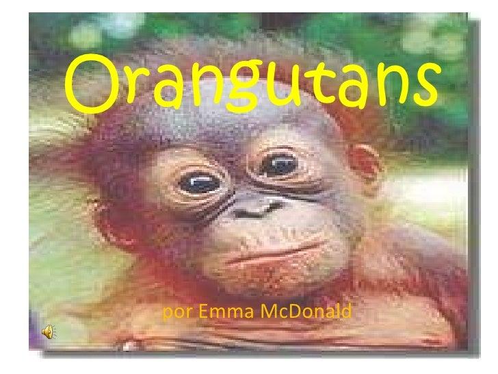 Orangutans<br />porEmma McDonald<br />
