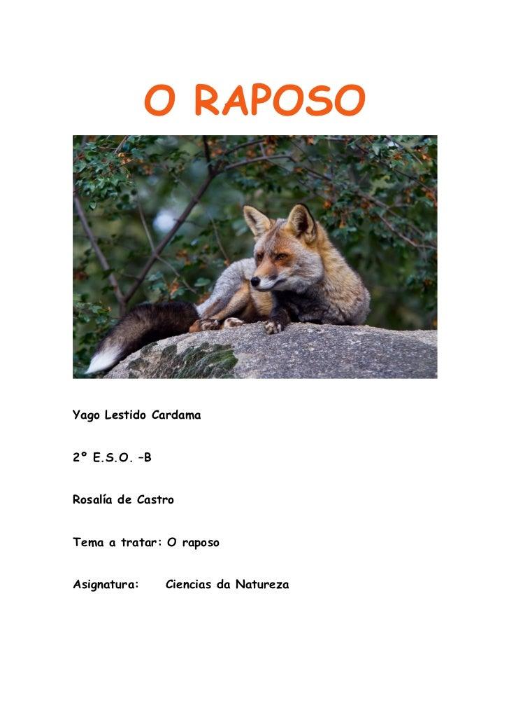 O raposo (2003)