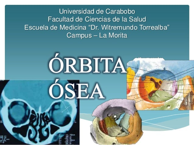 """Universidad de Carabobo       Facultad de Ciencias de la SaludEscuela de Medicina """"Dr. Witremundo Torrealba""""             C..."""