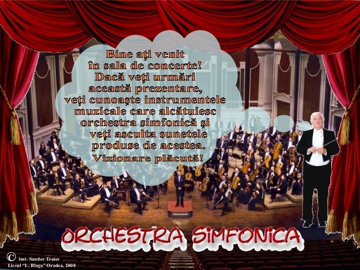 """Orchestra simfonicaC    inst. Sandor TraierLiceul """"L. Blaga"""" Oradea, 2008"""