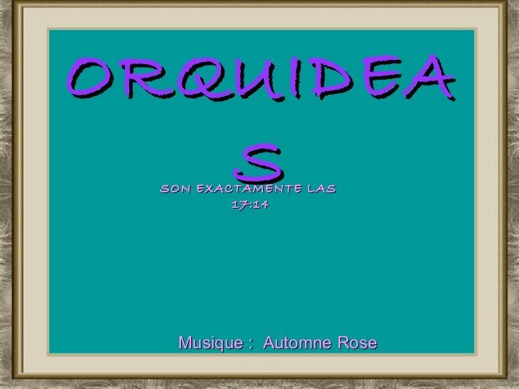 ORQUIDEAS Musique :  Automne Rose SON EXACTAMENTE LAS  16:58