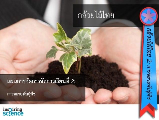 กล้วยไม้ไทย กล้วยไม้ไทย2:การขยายพันธุ์พืช แผนการจัดการจัดการเรียนที่ 2: การขยายพันธุ์พืช