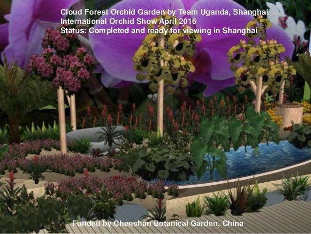 Cloud Forest Orchid Garden By Team Uganda, Shanghai International Orchid  Show April 2016 Status: ...