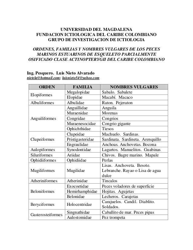 UNIVERSIDAD DEL MAGDALENA FUNDACION ICTIOLOGICA DEL CARIBE COLOMBIANO GRUPO DE INVESTIGACION DE ICTIOLOGIA ORDENES, FAMILI...