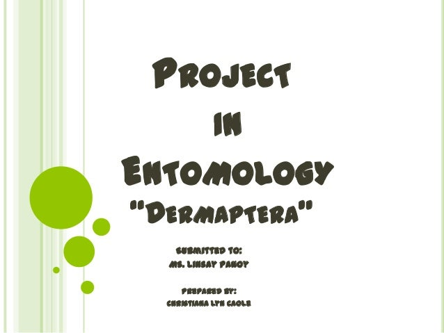 """PROJECT IN  ENTOMOLOGY """"DERMAPTERA"""" Submitted to: Ms. Linsay Panoy Prepared by: Christiana Lyn Caole"""