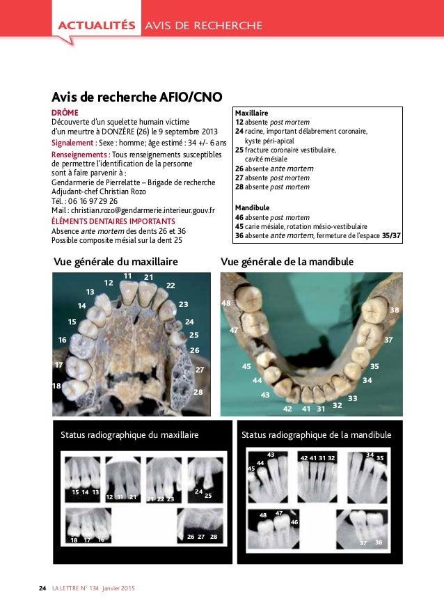 LA LETTRE NO 134 Janvier201524 ACTUALITÉS AVIS DE RECHERCHE Avis de recherche AFIO/CNO DRÔME Découverte d'un squelette h...