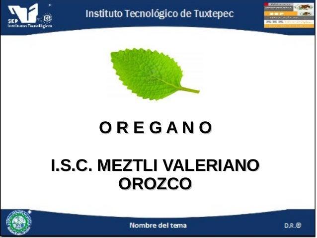 OREGANO I.S.C. MEZTLI VALERIANO OROZCO