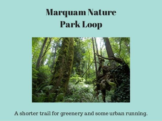 Marquam Nature Park Running