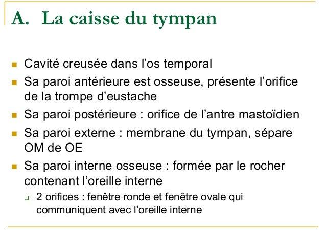 Oreille for Fenetre ronde oreille