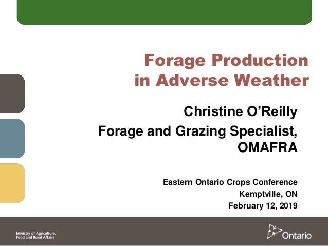 Forage Production in Adverse Weather Christine O'Reilly Forage and Grazing Specialist, OMAFRA Eastern Ontario Crops Confer...