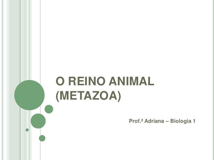 O REINO ANIMAL(METAZOA)          Prof.ª Adriana – Biologia 1