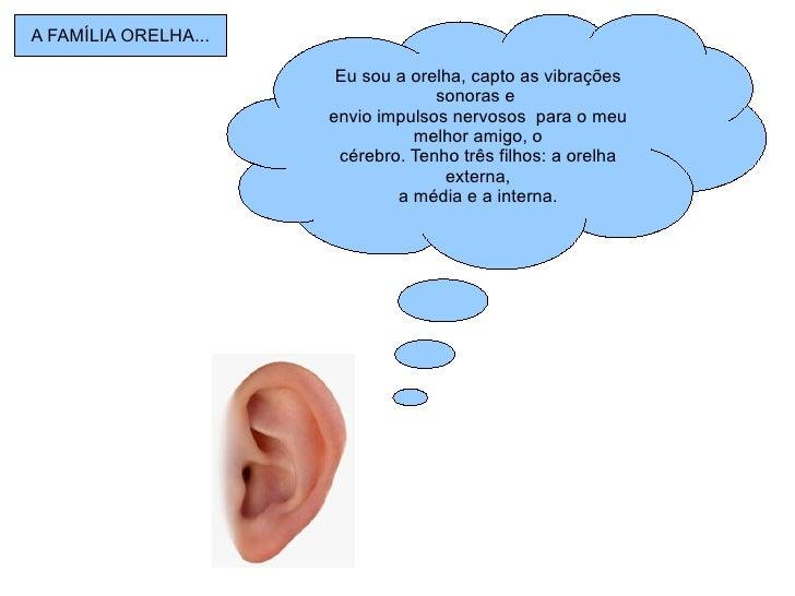 Eu sou a orelha, capto as vibrações sonoras e  envio impulsos nervosos  para o meu melhor amigo, o cérebro. Tenho três fil...