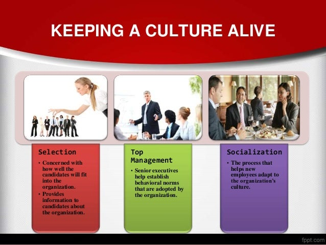 org culture Every organization has a distinct value for each of these characteristics, which,  when combined, defines the organization's unique culture members of.