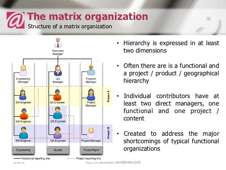 How to be more effective in a functional or a matrix organization