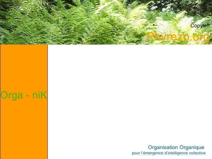 Organisation Organique  pour l'émergence d'intelligence collective Orga - niK Phyrezo.org Copyleft