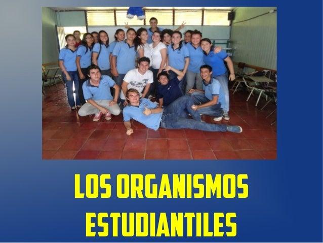 Los organismos estudiantiles