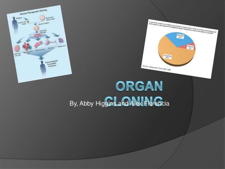 Organ Cloning<br />By, Abby Higgins and Alex Florencia<br />
