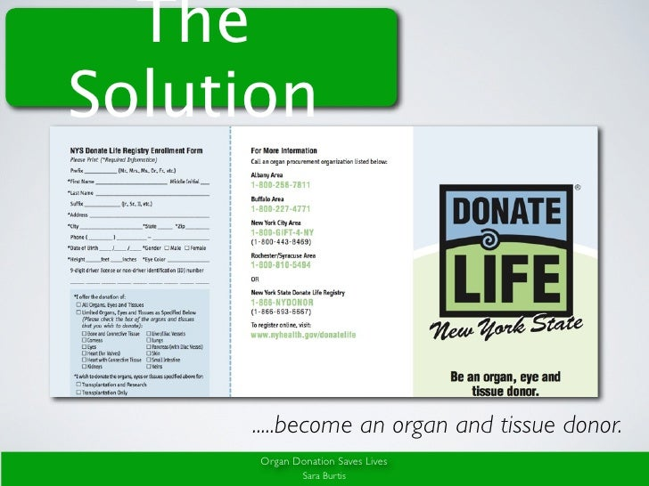 persuasive speech on organ donation powerpoint Here is an example of a free persuasive speech ladies and gentlemen, today i  am here to share with you my views on organ donation, in the.