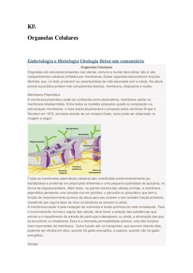 Kl Organelas Celulares Embriologia e Histologia Citologia Deixe um comentário Organelas Celulares Organelas são estruturas...