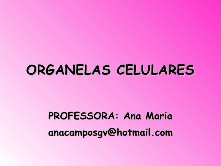 ORGANELAS CELULARES PROFESSORA: Ana Maria [email_address]