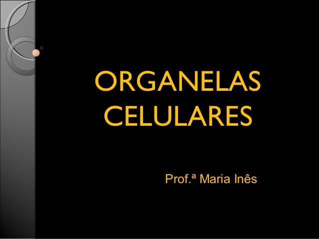 OORRGGAANNEELLAASS  CCEELLUULLAARREESS  Prof.ª Maria Inês