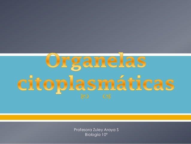  Profesora Zuley Araya SBiología 10°
