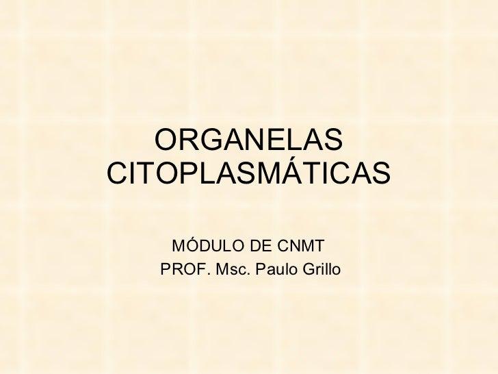 ORGANELAS CITOPLASMÁTICAS MÓDULO DE CNMT  PROF. Msc. Paulo Grillo