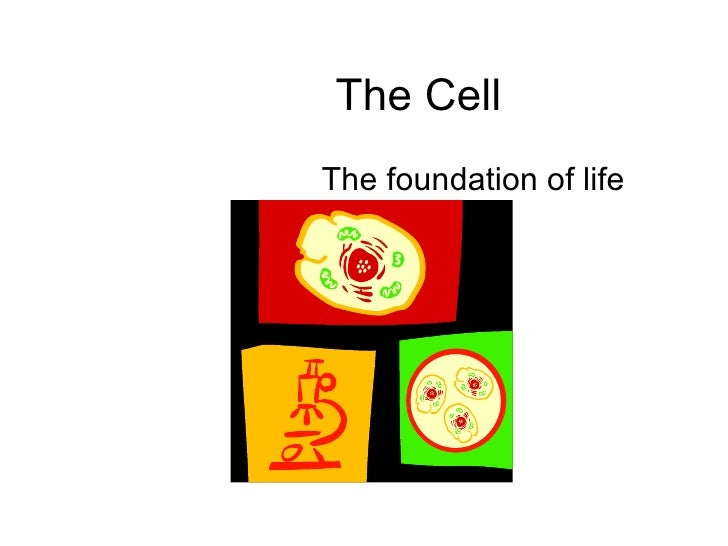 The Cell The foundation of life