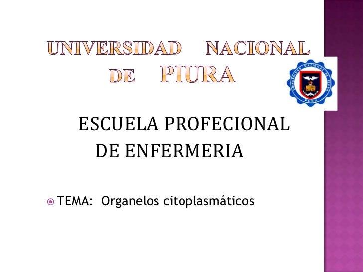 UNIVERSIDAD     NACIONAL                 DE     PIURA<br />ESCUELA PROFECIONAL <br />           DE ENFERMERIA<br />TEM...