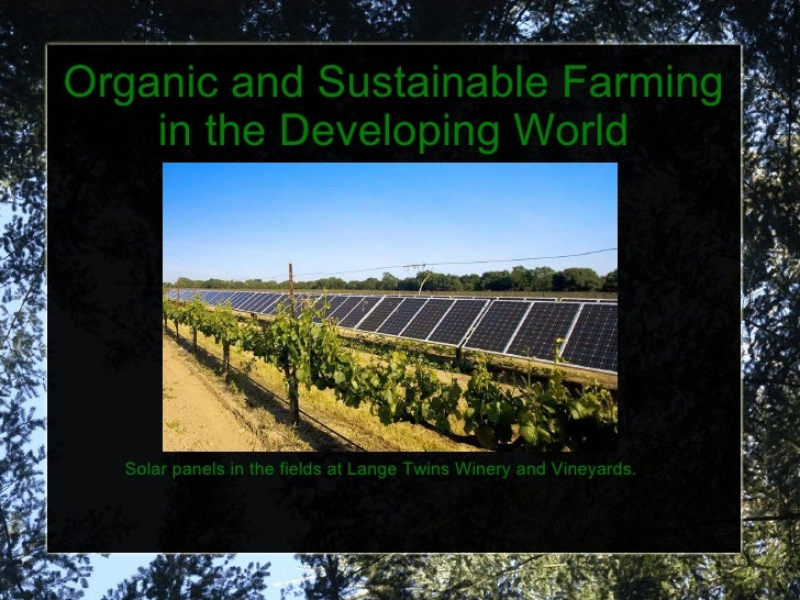 Organic and Sustainable Farming in the Developing World Solar panels in the fields at Lange Twins Winery and Vineyards.