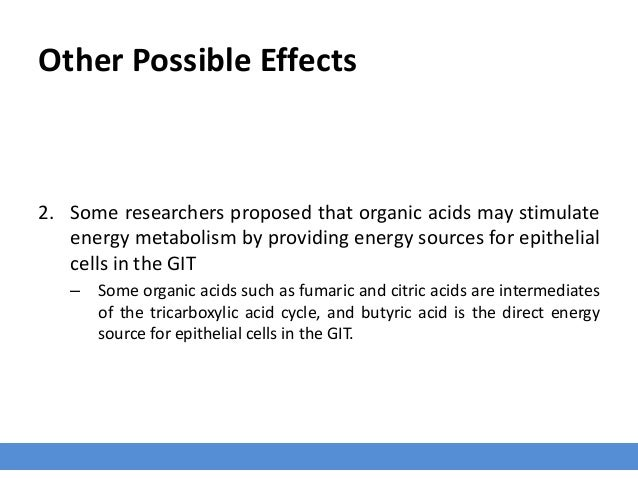 Other Possible Effects 2. Some researchers proposed that organic acids may stimulate energy metabolism by providing energy...