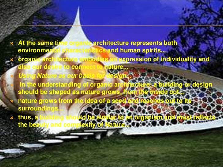 Ecological Individual Organic 4