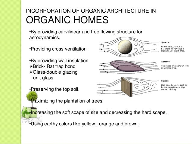 ORGANIC ARCHITECTURE IS VERY SIMPLENATURE OF THINGS 8