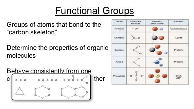 Organic chemistry review for Anatomy and Physiology Students