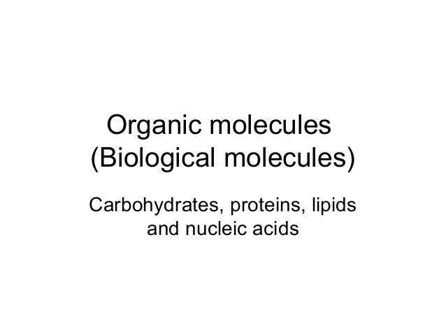 Organic molecules (Biological molecules) Carbohydrates, proteins, lipids and nucleic acids