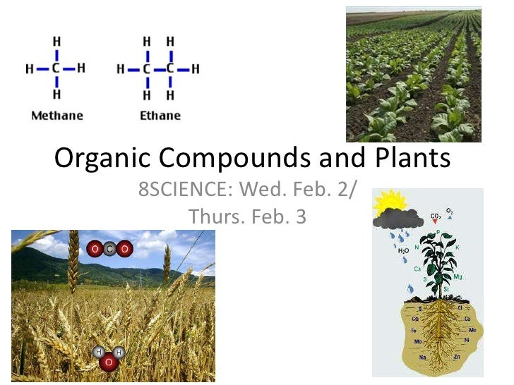 Organic Compounds and Plants<br />8SCIENCE: Wed. Feb. 2/ Thurs. Feb. 3<br />
