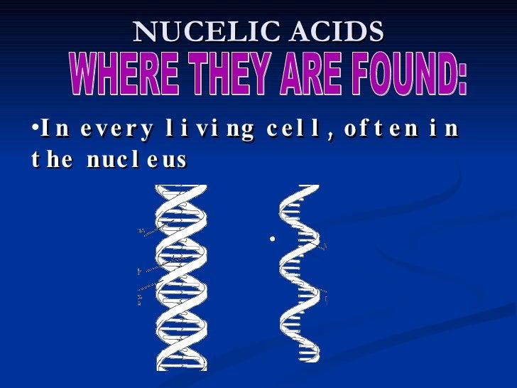 NPI Number | MICHAEL NUCE LIC PSYC | HUNTINGTON, WV