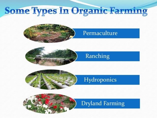 Top organic farming powerpoint templates, backgrounds, slides and.